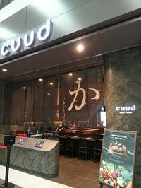 羽田空港「cuud」でカレーうどん! - 藍。の着物であるこう