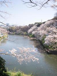 九段下---千鳥ヶ淵~靖国神社---JR市ヶ谷駅 - 岩月澄子-時の欠片を拾い集めて・・・