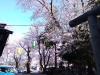 明日4 /5☆遠隔無料一斉ヒーリング~新月~受付を始めます(^^)/ - るんじんさんの帽子 ~天使からのエール~