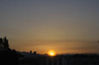 sunset(2cut) -     ~風に乗って~    Present