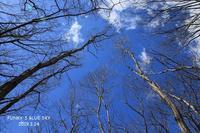 懐かしい場所へ - FUNKY'S BLUE SKY