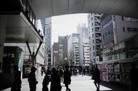 Tokyo Snap 39秋葉原 - 花は桜木、