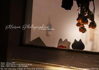 金森玲奈さんのアトリエにお邪魔してsony α7RIII + SEL55F18Zでスナップってみた夜 - 東京女子フォトレッスンサロン『ラ・フォト自由が丘』-カメラとレンズとテーブルフォトと-