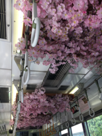 嵐電沿線 花盛り - 京都西陣 小さな暮らし