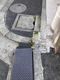 雑草タンポポ - 相模原・町田エリアの写真サークル「なちゅフォト」ブログ!
