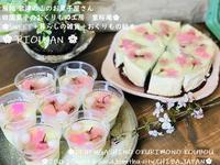 さくらSWEET - 田園菓子のおくりもの工房 里桜庵