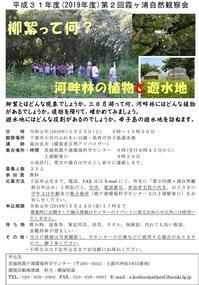 【第2回霞ヶ浦自然観察会「柳絮って何?河畔林の植物と遊水地」を開催します!参加者募集中です!】 - ぴゅあちゃんの部屋