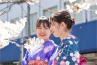 桜乙女♯1 - あ お そ ら 写 真 社