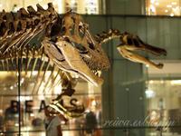 Scheletri di Dinosauria Palazzo Shin-Marunouchi - Reiwa Foto Japan