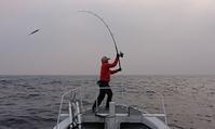 ヒラマサキャスティングインチク2019-4-6 - 五島列島 遊漁船 MANA 釣果情報 ヒラマサ