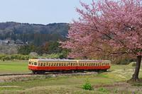 春のローカル鉄道2019-04-28更新 - 夕陽に魅せられて・・・