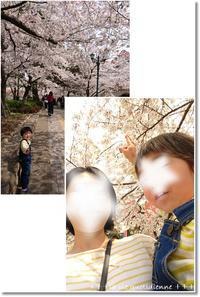 消防車に乗せてもらった王子と桜ソフトクリームを桜並木で…♪ - 素敵な日々ログ+ la vie quotidienne +