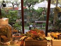 Botanical Garden〜兵庫尼崎の dent-de-lionさん - 素敵なモノみつけた~☆