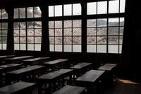 学び舎の桜 - ecocoro日和