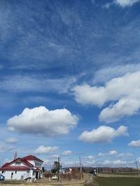 天気のよい一日 - 北海道・池田町のワインの国からお知らせです