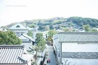 赤い傘。 - Yuruyuru Photograph