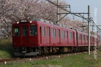 今日も桜コラボ - きょうはなに撮ろう