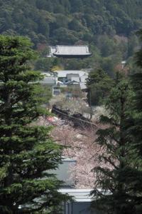 南禅寺遠望 - Taro's Photo