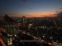 Shinjuku Tokyo 05.11.2010 - Reiwa Foto Japan