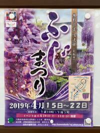 今年の藤まつり♪♪ - ブレスガーデン Breath Garden 大阪・泉南のお花屋さんです。バルーンもはじめました。