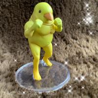 ガチムチ鳥 - はるなつあきふゆ主婦生活史