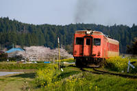 いすみ鉄道、春爛漫~Ⅳ - :Daily CommA: