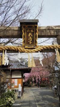 2019.03.28の京さんぽ~水火天満宮 - 京さんぽ