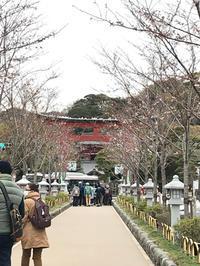 横浜・鎌倉・伊豆の旅⑤ 〜鎌倉編 その3〜 - 笑う門には福来たる