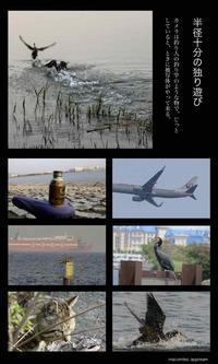 半径10分の独り遊び - Photocards with love