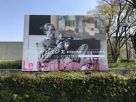 ル・コルビジェ国立西洋美術館開館60周年記念 - 体温を感じる家づくり