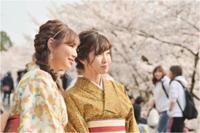 桜乙女♯3 - あ お そ ら 写 真 社