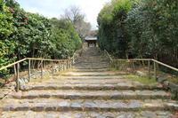 【白毫寺】奈良旅行 - 11 - - うろ子とカメラ。