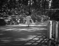 ヒカリトカゲの参道で踊る女性 - Film&Gasoline