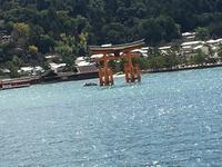 京都から広島へ~安芸の宮島 - IL PARADISO VERDE DI NORINA ~美瑛印象派ガーデン便り~