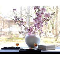 陽光桜 - カエルのバヴァルダージュな時間