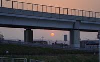 「朝日を浴びて-長岡天満宮の桜-」 - ほぼ京都人の密やかな眺め Excite Blog版
