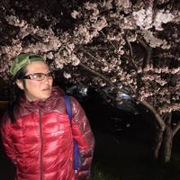 朝霞花見2019 黒目川夜桜 - RÖUTE・G DRIVE AFTER DEATH