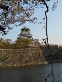 藤田八束の鉄道写真@春爛漫の大阪、美しく桜に囲まれた大阪城・・・楽しい乗り物が大阪城を走る、観光客は知っている大阪の面白さを - 藤田八束の日記