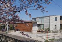 桜とシングルパネルの外観 - kukka  kukka