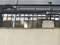 渋谷区栄和ハウス外装工事進捗 - 一場の写真 / 足立区リフォーム館・頑張る会社ブログ