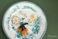春植物の小部屋 Vol.2 - カスパイッカ -北欧のアンティーク雑貨と手仕事の店-