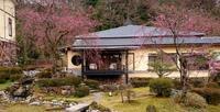 4月1日のこと - 金沢犀川温泉 川端の湯宿「滝亭」BLOG