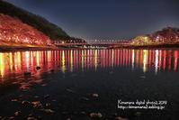 井原堤の夜桜 - 気ままな Digital PhotoⅡ