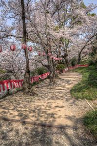 桜のお寺 - ぽとすのくずかご