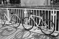 ルイガノの自転車と自転車に乗る兄弟 - 照片画廊