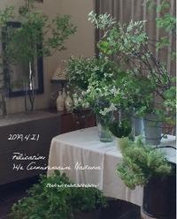 4月の花屋:卯月の市によせて - tukikusa note