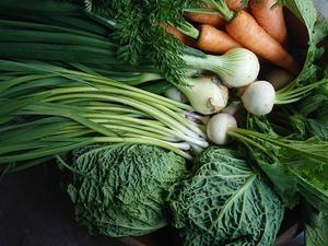 vegetable - お山の宿 みちつじ