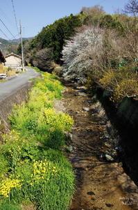 桜井市箸中 - ぶらり記録:2 奈良・大阪・・・