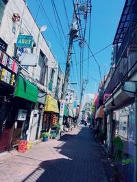台湾家族に全部もっていかれるの旅。 - しっかり立って、希望の木