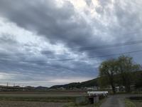 定点観察!??「きのうのココちゃん散歩、雲が厚くて広くて・・・やっぱり雨。」編 - ドライフラワーギャラリー⁂ふくことカフェ
